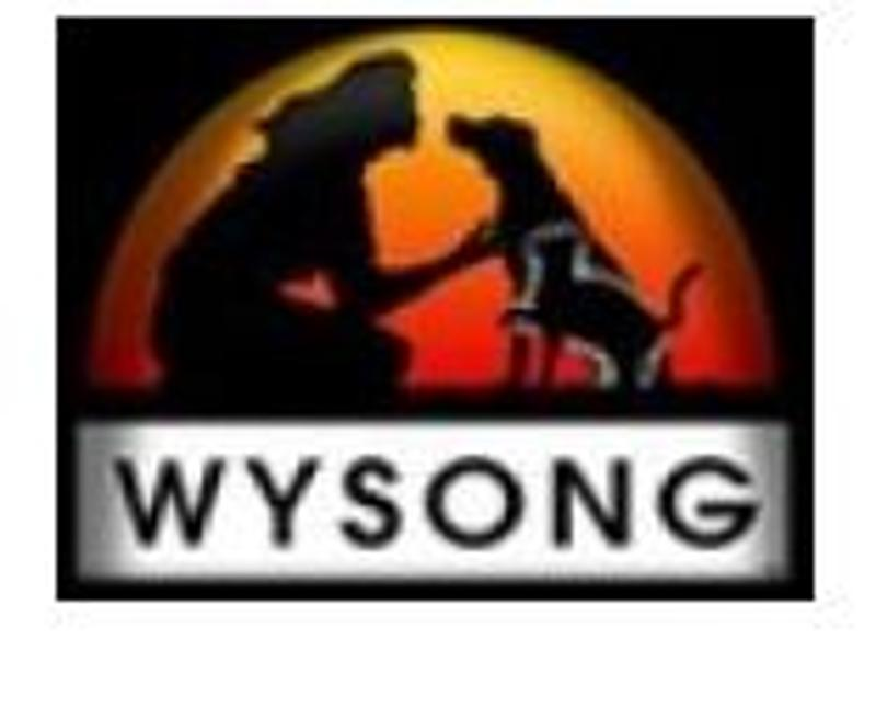 WYSONG Coupons & Promo Codes